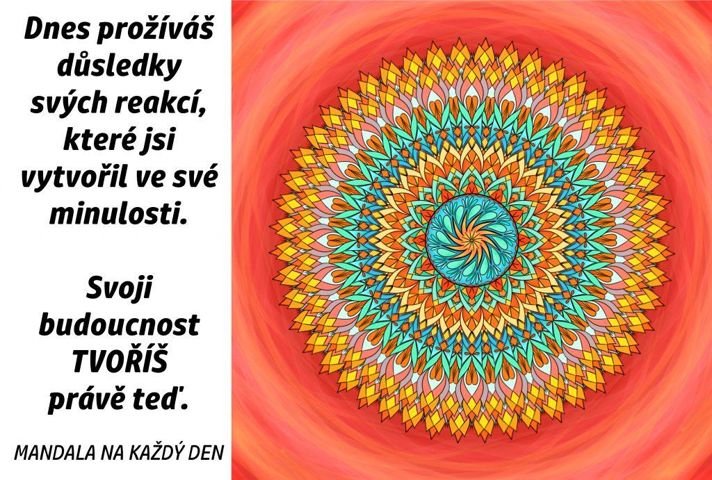 Mandala Svoji budoucnost tvoříš právě teď