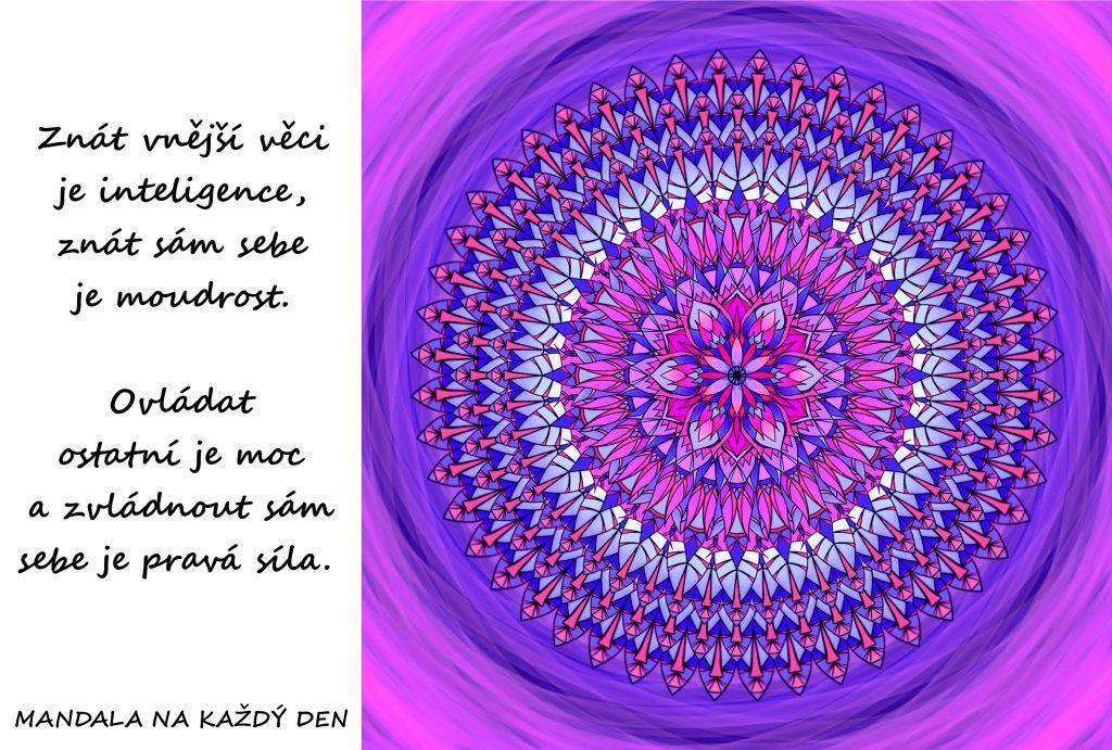 Mandala Inteligence, moudrost, moc a síla