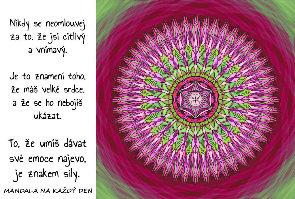 Mandala Citlivost a vnímavost