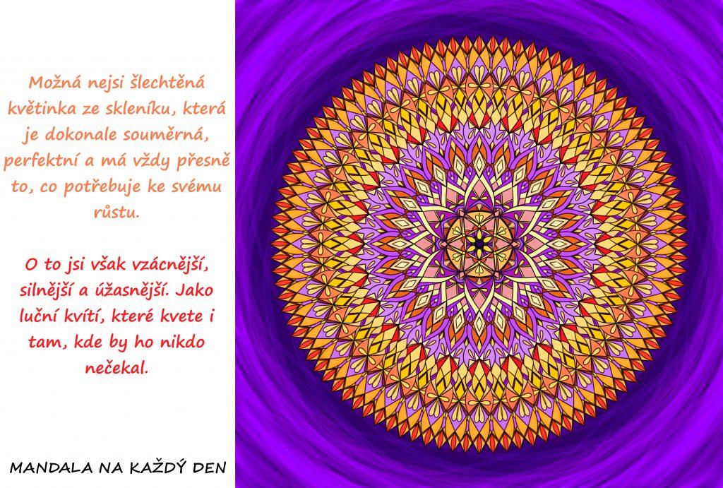 Mandala Krása lučního kvítí