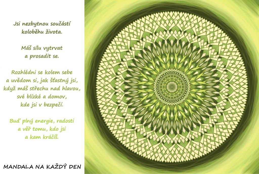 Mandala Uvědom si své štěstí